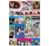 Educa Jigsaw Puzzle - Kitten Collage - 1000 pieces